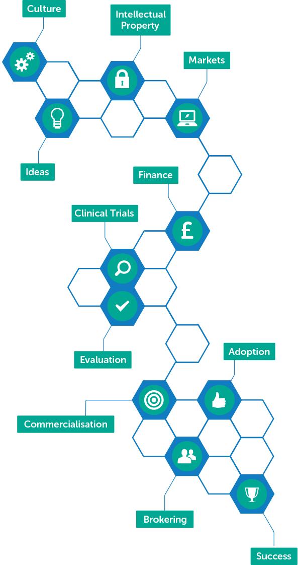 innovation pathway graphic